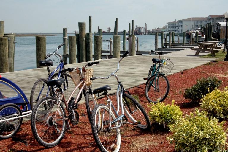 Bikes-in-Park