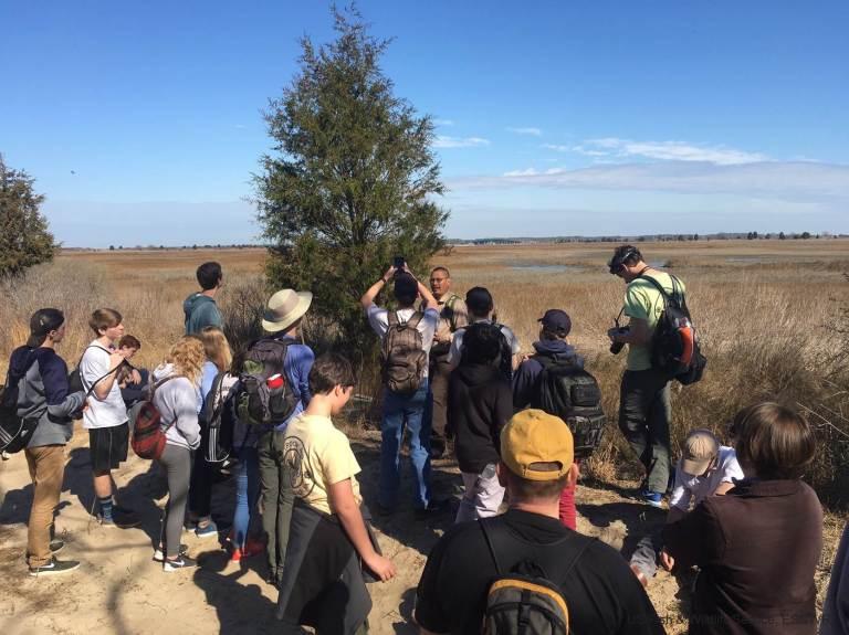 Max Explaining cordgrass marsh