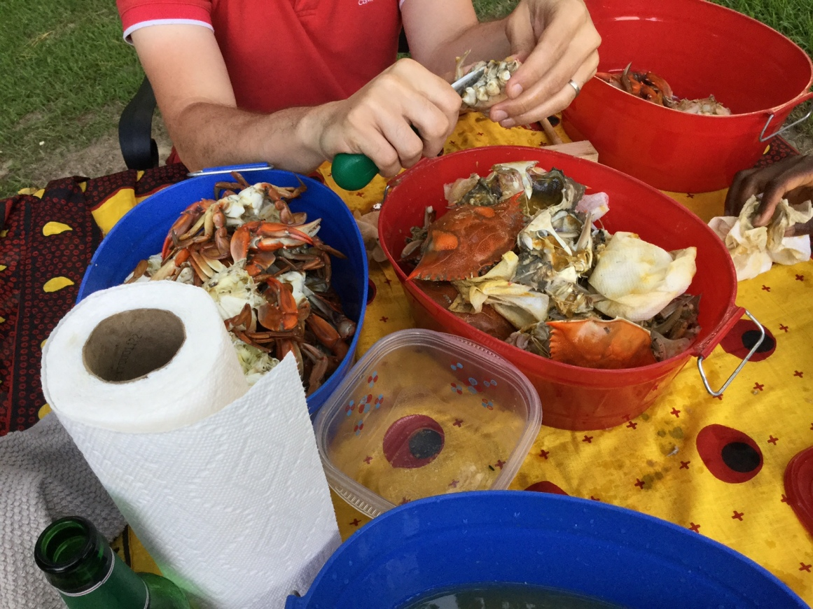 2017 colorful picking crabs